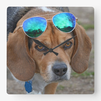 Funny Cool Beagle With Sunglasses On Head Square Wall Clock