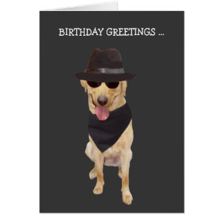 Funny Cool Dog/Lab from Group Card