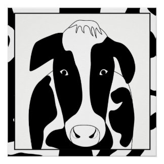 Funny Cow 20x20 Poster