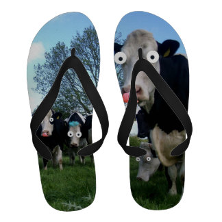 Funny Cow Sandals