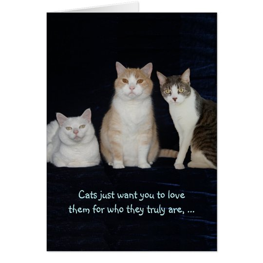 Funny Customizable Cats Card