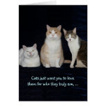 Funny Customizable Cats Greeting Card