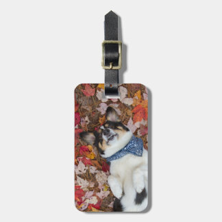 Funny, Cute, Corgi Look Luggage Tag