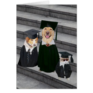 Funny/Cute Dog Graduation Card