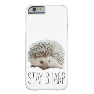 Funny cute hedgehog stay sharp quote hipster humor barely there iPhone 6 case