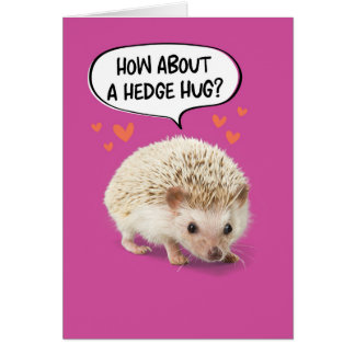 Funny Cute Hedgehog Taking Prick Out of Birthday Card