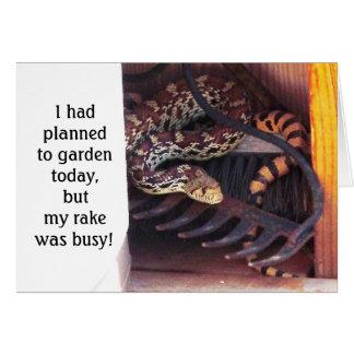 Funny Cute Herp Friendship - Sonoran Gopher Snake Card