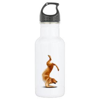 Funny dog 532 ml water bottle