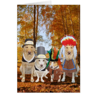 Funny Dog/Lab/Hound Pilgrims and Indians Card