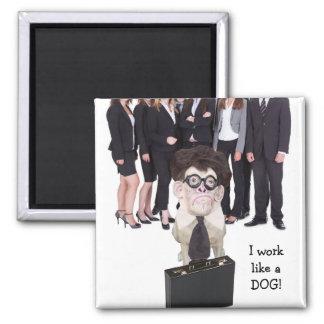 Funny Dog/Lab Office Humor Square Magnet