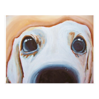 Funny Dog Painting Postcard