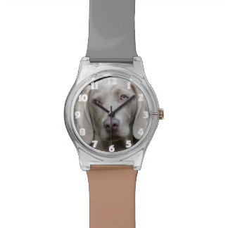 Funny Dog Photo Watch Gift