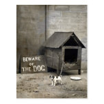 Funny Dog postards Post Card