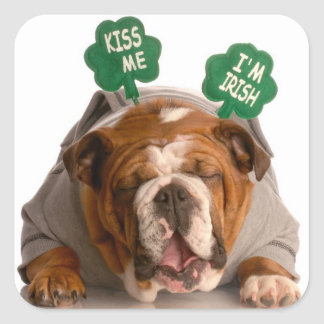 Funny Dog Stickers