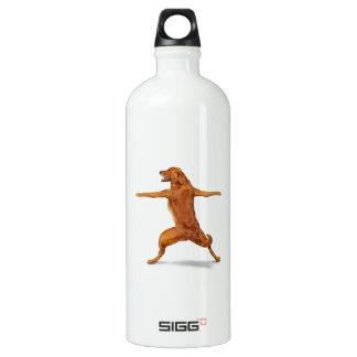 Funny Dog Water Bottle