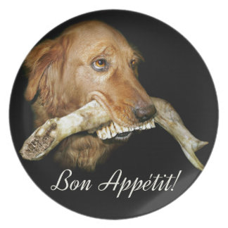 Funny Dog with Horse's Teeth Bone Plate