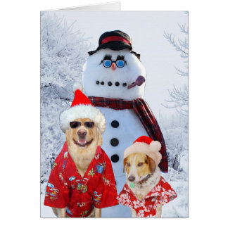Funny Dogs Cool Yule Card