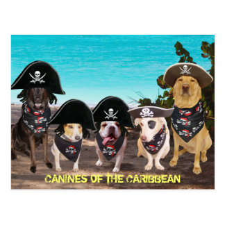 Funny Dogs Talk Like a Pirate Day Postcards