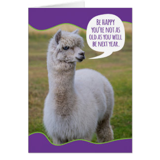 Funny Dolly Llama Birthday Wisdom Card