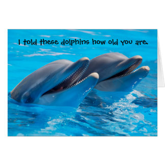 Funny Dolphins Birthday Card