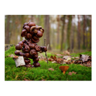 Funny dwarf made of chestnuts collects mushrooms postcard
