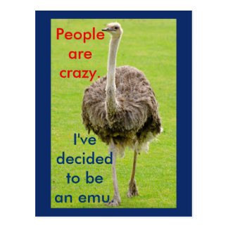 Funny Emu Postcard
