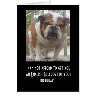 Funny English Bulldog Birthday Card