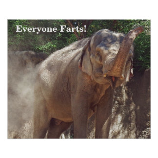 Funny Everyone Farts! Elephant Poster