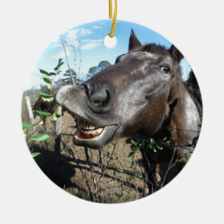 Funny Face brown horse Round Ceramic Ornament
