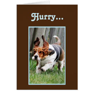 """Funny """"Father's Day"""" Card w/Cute Basset Hound"""