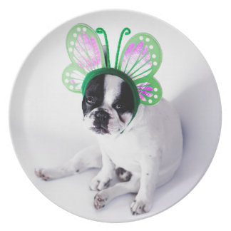 Funny French Bull Dog Black and White Butterfly Plate