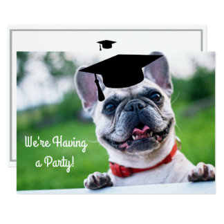 Funny French BullDog Dog Photo Graduation Party Card