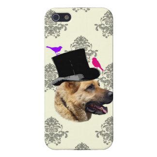 Funny German shepherd dog iPhone 5/5S Covers