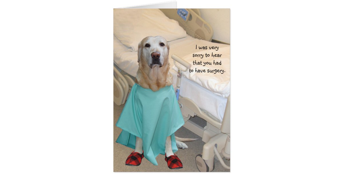 Funny Get Well Lab in Hospital Gown Card   Zazzle.ca