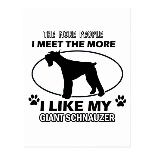 Funny giant schnauzer designs postcards