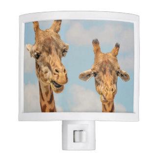 Funny Giraffes Nite Lite