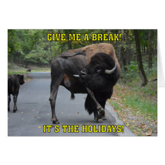 Funny Give Me A Break Bison Bull Christmas Card