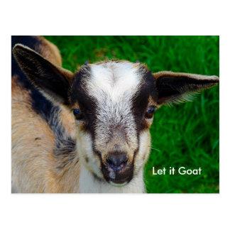 Funny Goat Parody Postcard