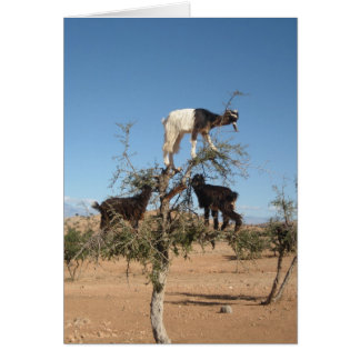 Funny goats in a tree card