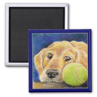 Funny Golden Retriever dog with tennis ball Square Magnet