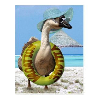 Funny Goose on Summer Vacation Postcard