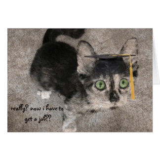 Funny Graduation, Wide-Eyed Kitten Card