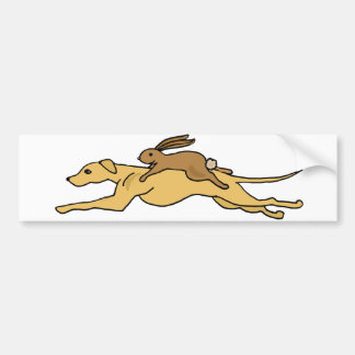 Funny Greyhound Dog Racing with Rabbit on Top Bumper Sticker