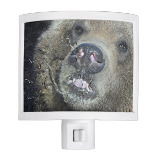 Funny Grizzly Bear Cub Licking The Glass Window Nite Light