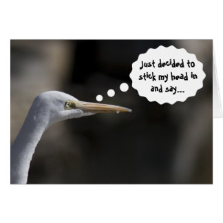 Funny Happy Birthday White Crane Bird Card