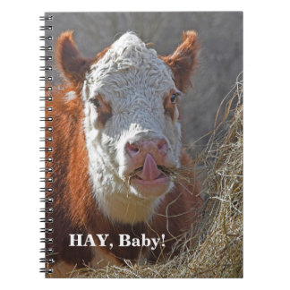Funny HAY Baby! Sexy Cow Play On Words Notebooks