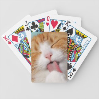 Funny hilarious silly cat bicycle playing cards