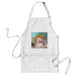 Funny hilarious silly cat standard apron