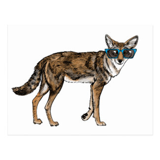 Funny Hipster Coyote with Sunglasses Postcard