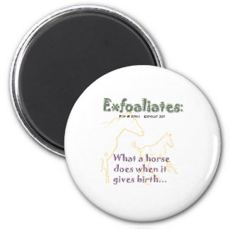 Funny Horse:  Exfoaliate 2 Inch Round Magnet
